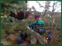 Kids and tree